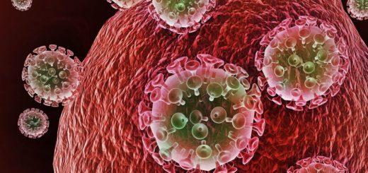 Quelques plantes antirétrovirales contre le VIH