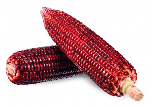 Comment soigner naturellement les kystes, les fibromes et les myomes : Maïs rouge