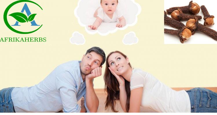 Comment utiliser le clou de girofle pour vaincre l'infertilité masculine ?
