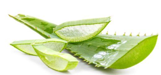 Comment utiliser l'aloe vera pour redevenir vierge ?