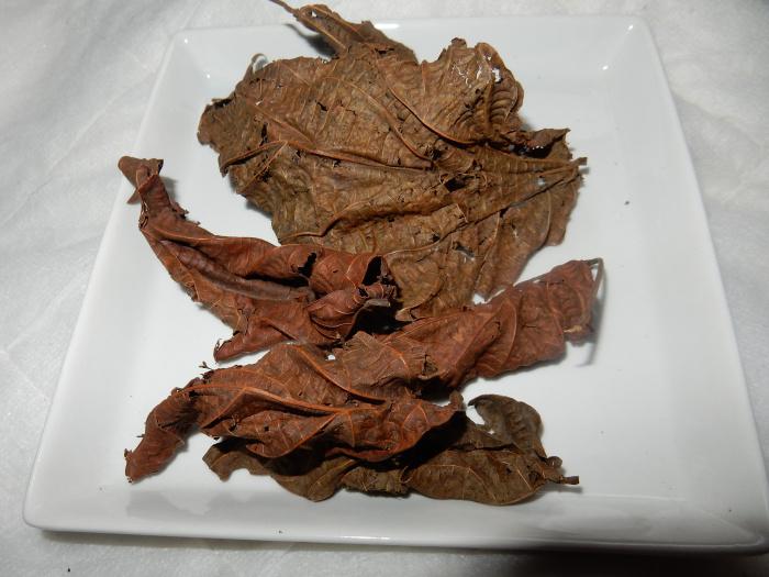 Les feuilles de Djéka pour redevenir vierge