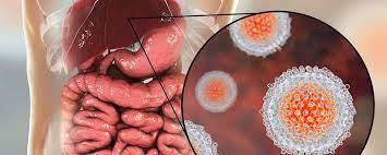 Jatropha: la plante pour soigner le VIH et l'Hépatite B