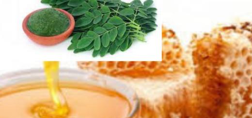 Moringa et miel : Le mélange qui guéri toutes les maladies