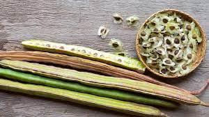 Les graines de moringa, un puissant remède contre la prostatite